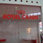 """Royal Canin Schaufenster """"Wissen und Respekt"""""""