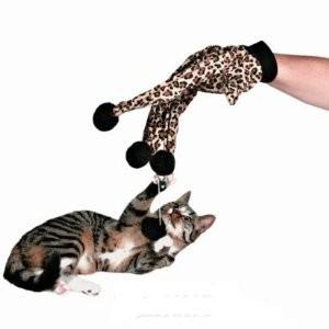 Katzen Spielhandschuh