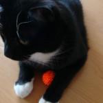 Igelball für Katzen 3
