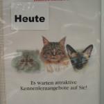 Royal Canin Rassekatzen Haustiermesse Hamburg