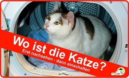 aktion_tier_wo_ist_die_katze