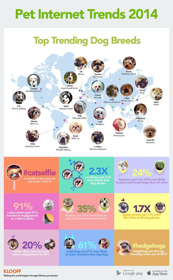 Klooff_Pet-Internet-Trends-2014_590