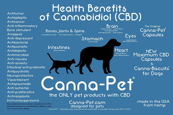 Infografik Canna-Pet™