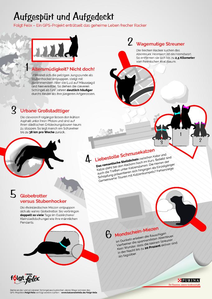 FolgtFelix_ Infografik-vorschau