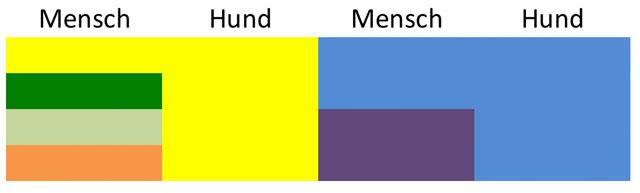 Unterschiedliche Farbwelten bei Mensch und Hund ©revvet.de
