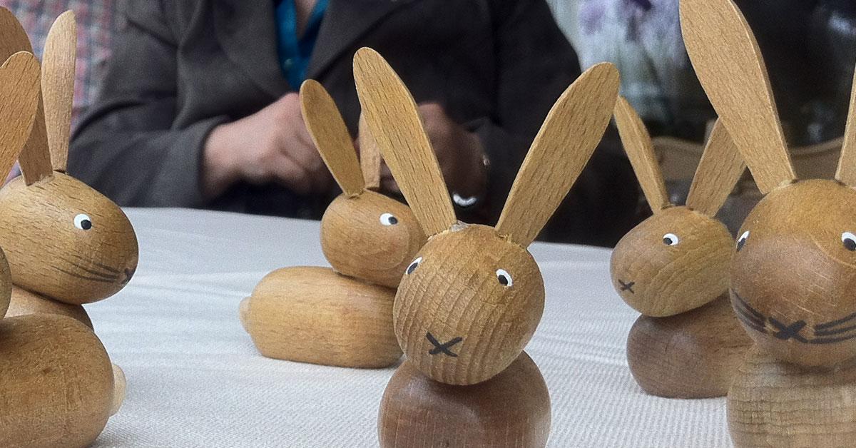 alles über hasen und kaninchen