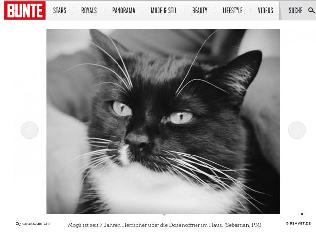 Screenshot: bunte.de