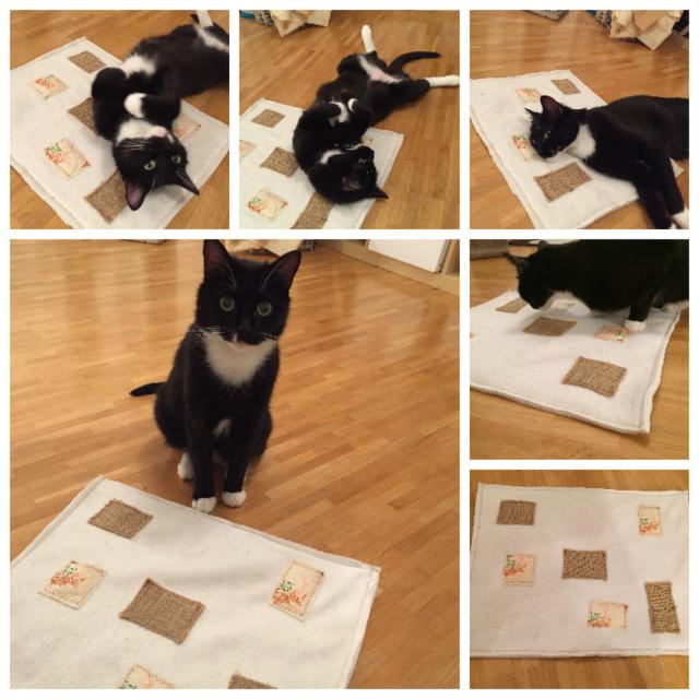 Katzen-Knisterdecke