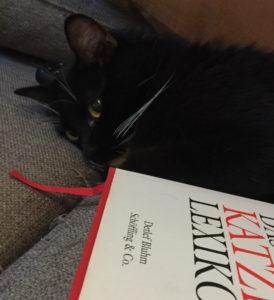 das-grosse-katzenlexikon-2