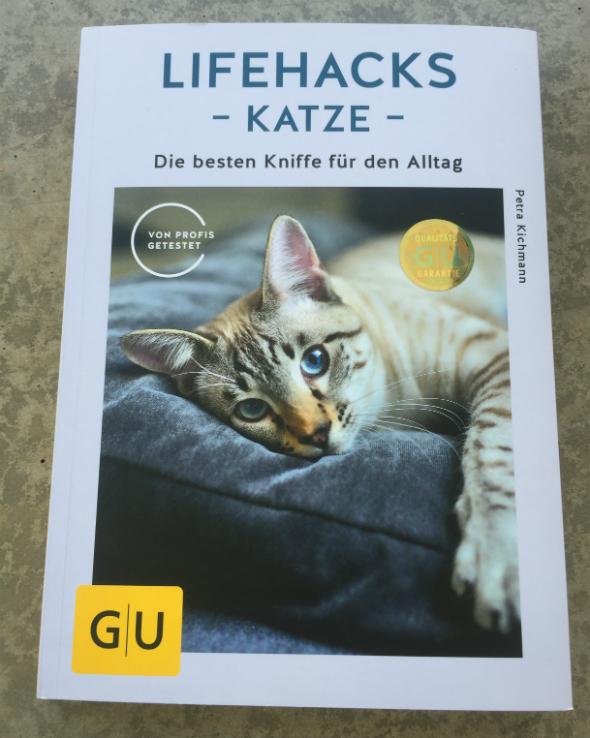 lifehacks-katze