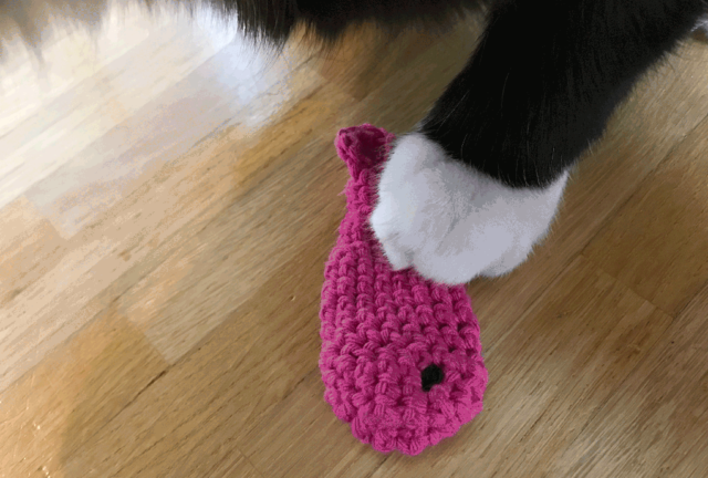 katzenspielzeug-selber-machen